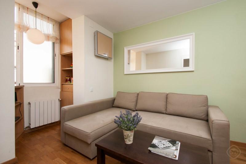 Gracia Garden apartment Barcelona photo 31816043