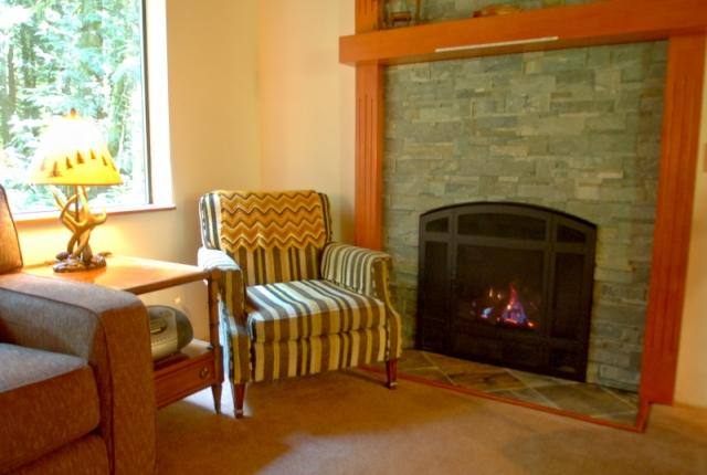 Mt. Baker Lodging Cabin #67 – HOT TUB, FIREPLACE, BBQ, PETS OK, D/W, SLEEPS-5! photo 60636