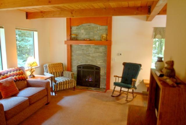 Mt. Baker Lodging Cabin #67 – HOT TUB, FIREPLACE, BBQ, PETS OK, D/W, SLEEPS-5! photo 60635