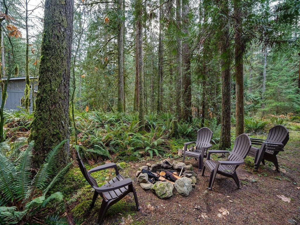 Apartment Mt  Baker Lodging Cabin  42  ndash   HOT TUB  PETS OK  BBQ  W D  WIFI  SLEEPS 4  photo 3870615