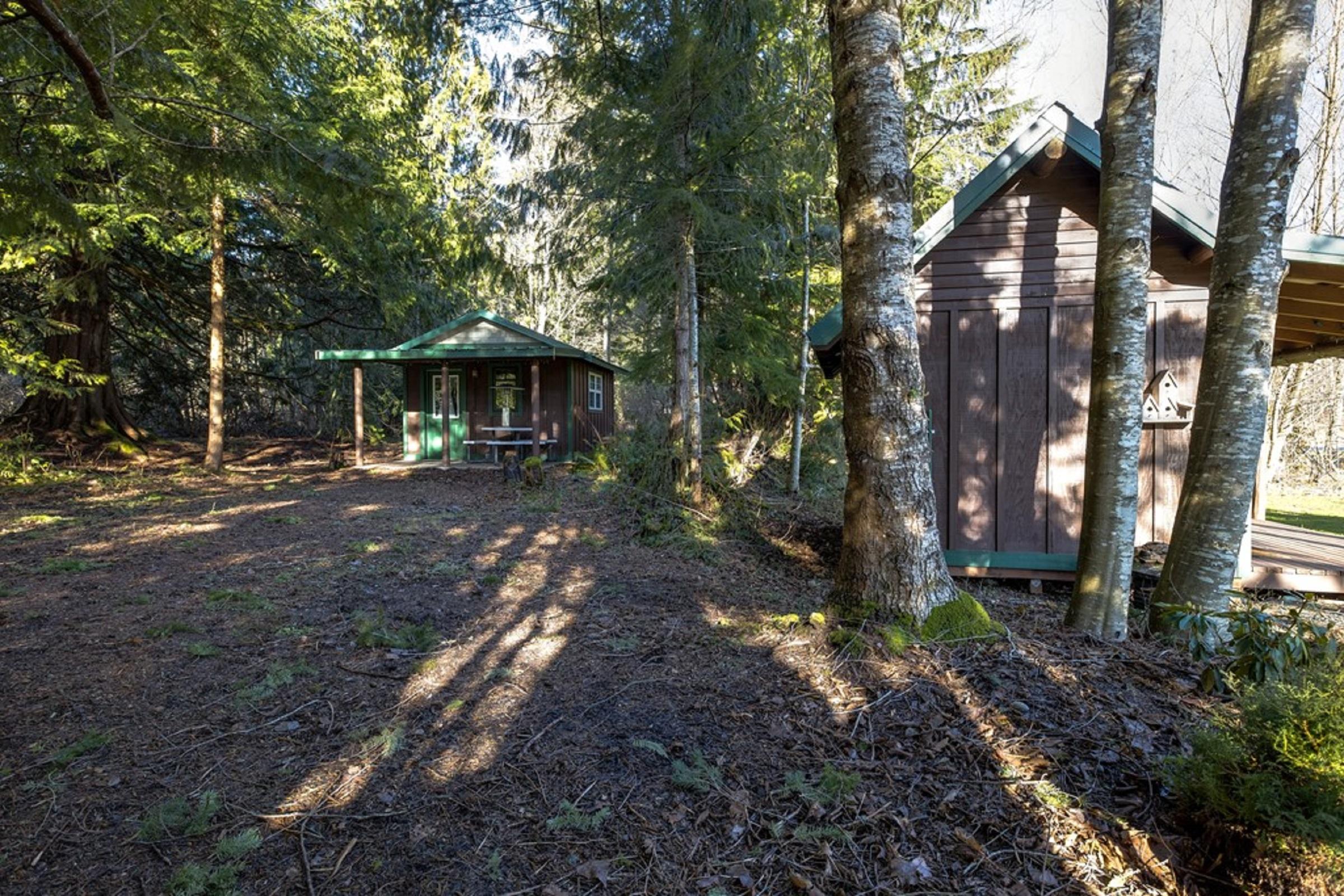 Apartment Mt  Baker Lodging Cabin  72  ndash  PET FRIENDY  MT VIEWS  BBQ  SLEEPS 2  photo 31818169