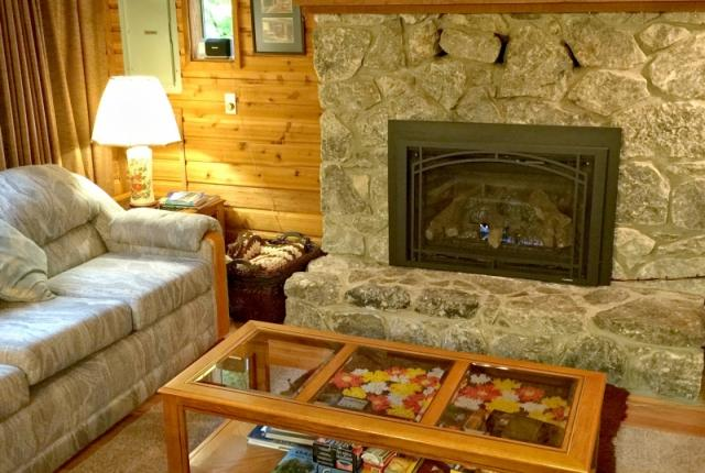 Mt. Baker Lodging Cabin #35 – A/C, PETS OK, DISHWASHER, FIREPLACE, SLEEPS-6! photo 59976